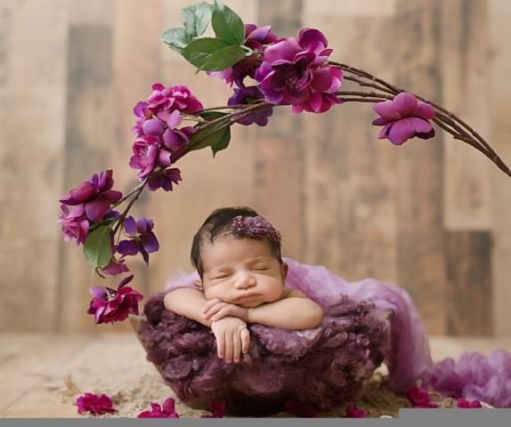 Newborn Photography Edmonton