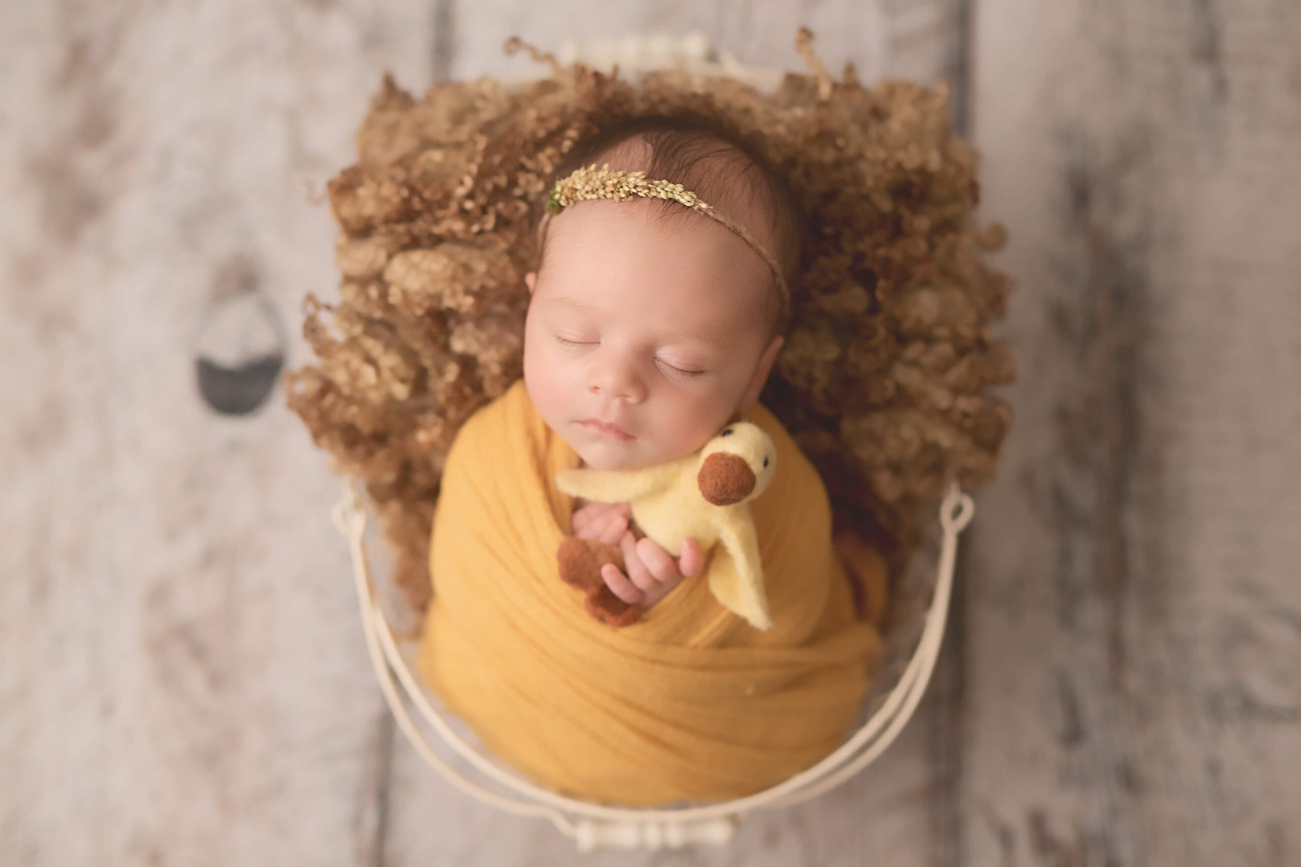 Newborn and Maternity Photographer Edmonton, AB